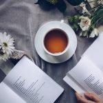 dicas de livros para não perder a fé na humanidade