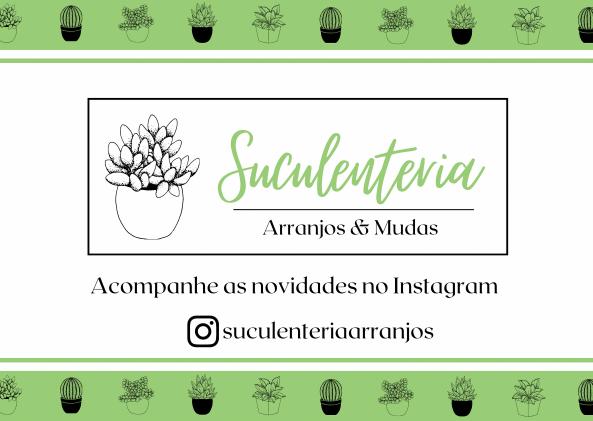 Suculenteria